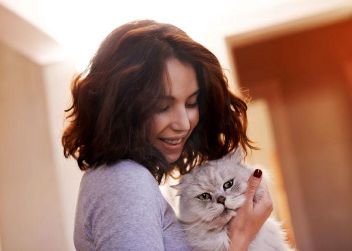 Do cats give us toxoplasmosis
