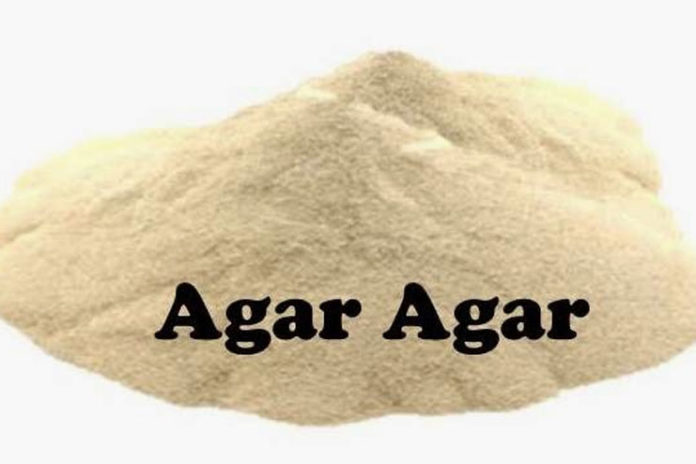 uses of agar agar