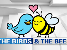 birds and bees talk