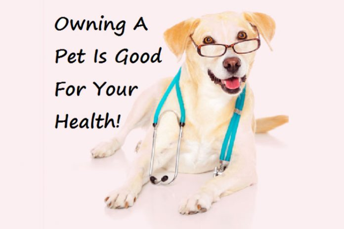 pets help your health condition