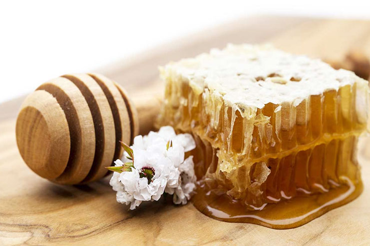Manuka Honey-strongest natural antibiotics