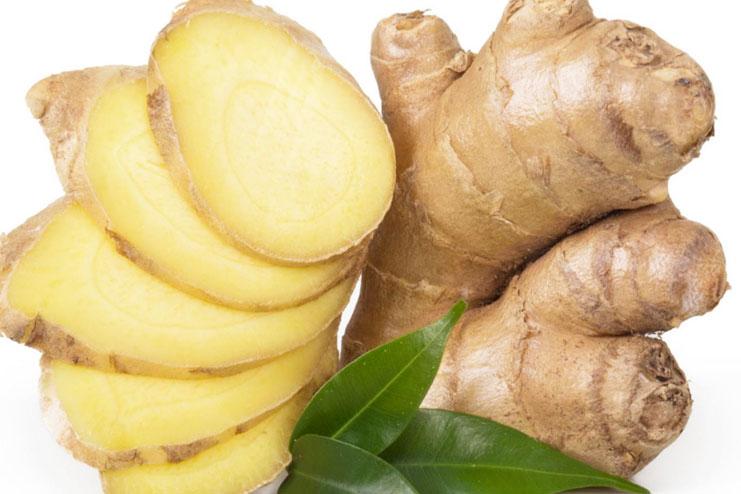 Ginger-strongest natural antibiotics