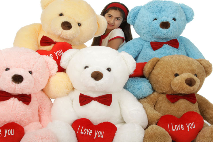 Teddy day celebrated on Feb 10th