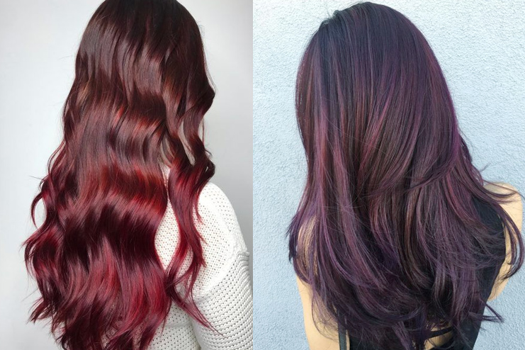 Deep Red and Burgundy