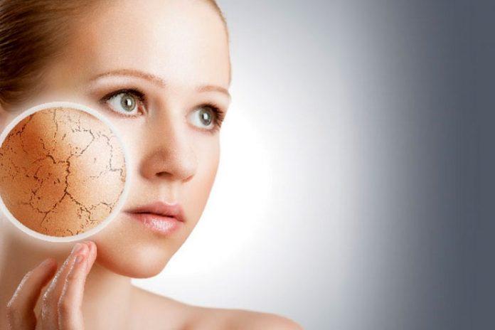 Treat Dehydrated Skin