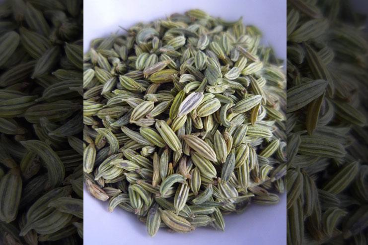 Wonders of fennel seeds