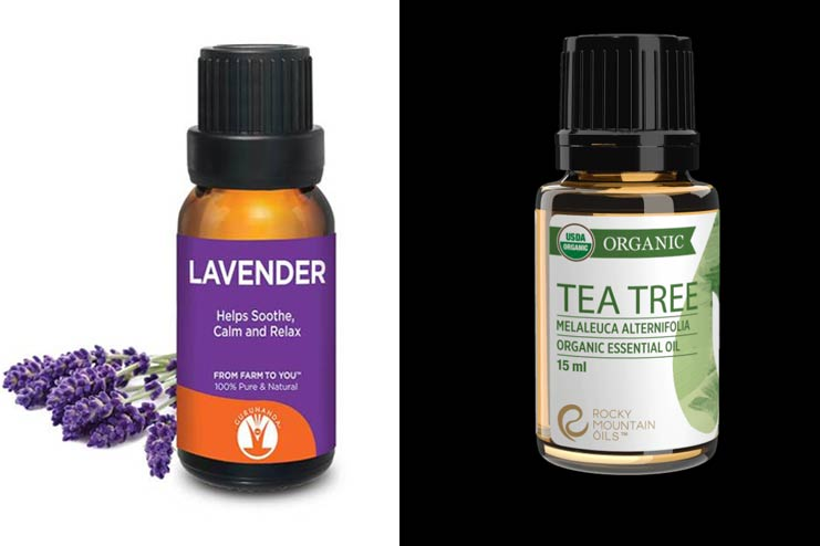 Lavender-Oil-Tea-Tree-Oil
